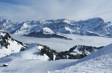 Gryon Winter | © © Office du Tourisme du Canton de Vaud